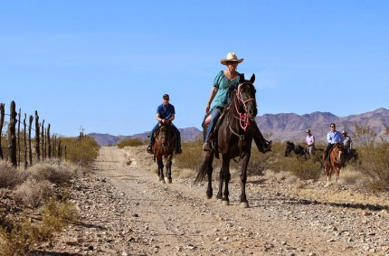 Roadside MBA: Selling Experiences vs. Products at Stagecoach Trails Guest Ranch